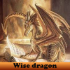 Wise dragon 5 Differences