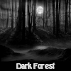 Dark Forest. Find objects