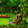 Forest Glade  5 Differenc…