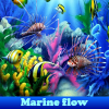 Marine flow  5 Difference…