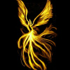 Phoenix feather 5 Differe…