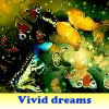 Vivid dreams 5 Difference…