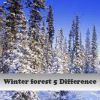 Winter forest 5 Differenc…